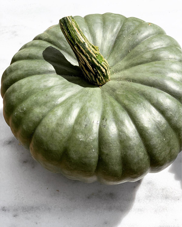 Organic Heritage pumpkin