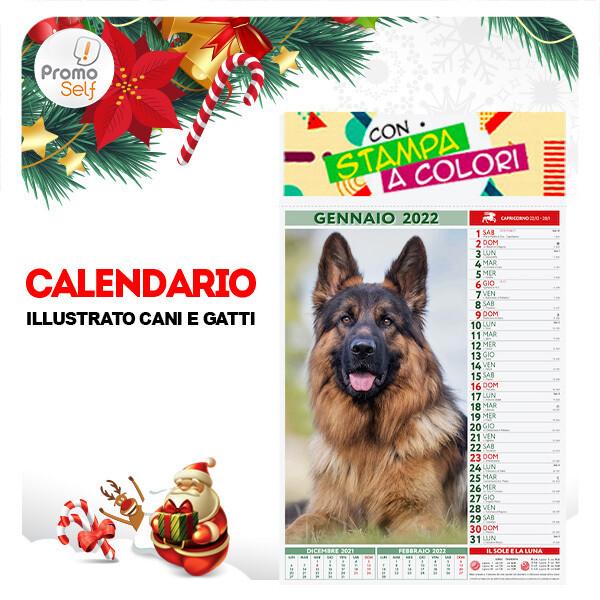 CANI E GATTI | calendario illustrato