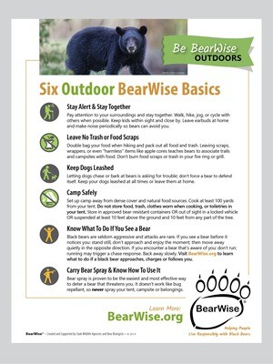 Six Outdoor BearWise Basics