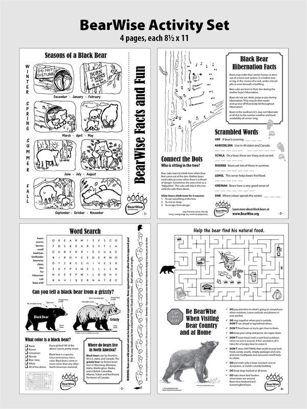 BearWise Facts & Fun 4-page Activity Set (PDF)