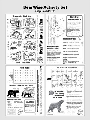 BearWise Facts & Fun 4-page Activity Set (PDF)