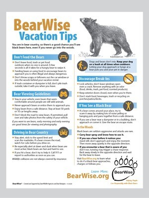 BearWise Vacation Tips