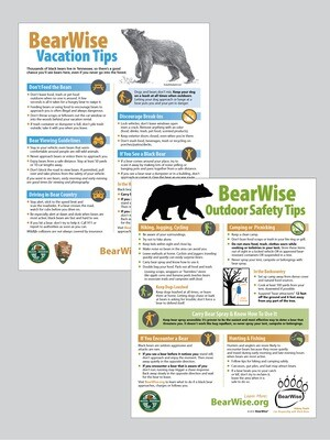 Tennessee Flyer: BearWise Vacation Tips / Outdoor Safety Tips