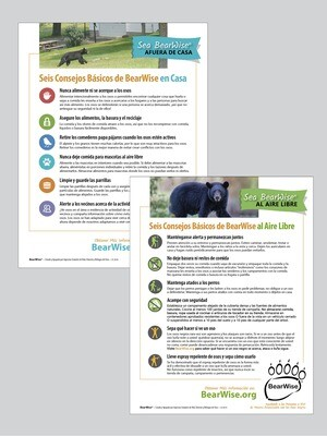 Spanish Flyers: BearWise Basics