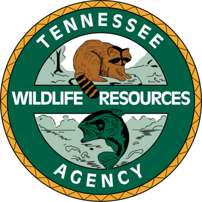 BearWise Tennessee Giveaways
