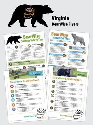 BearWise Flyer Set