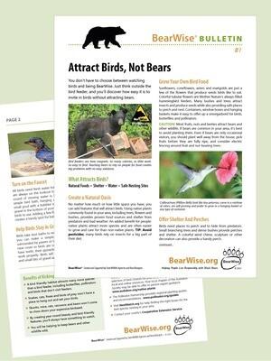 BearWise Bulletin #1: Attract Birds, Not Bears