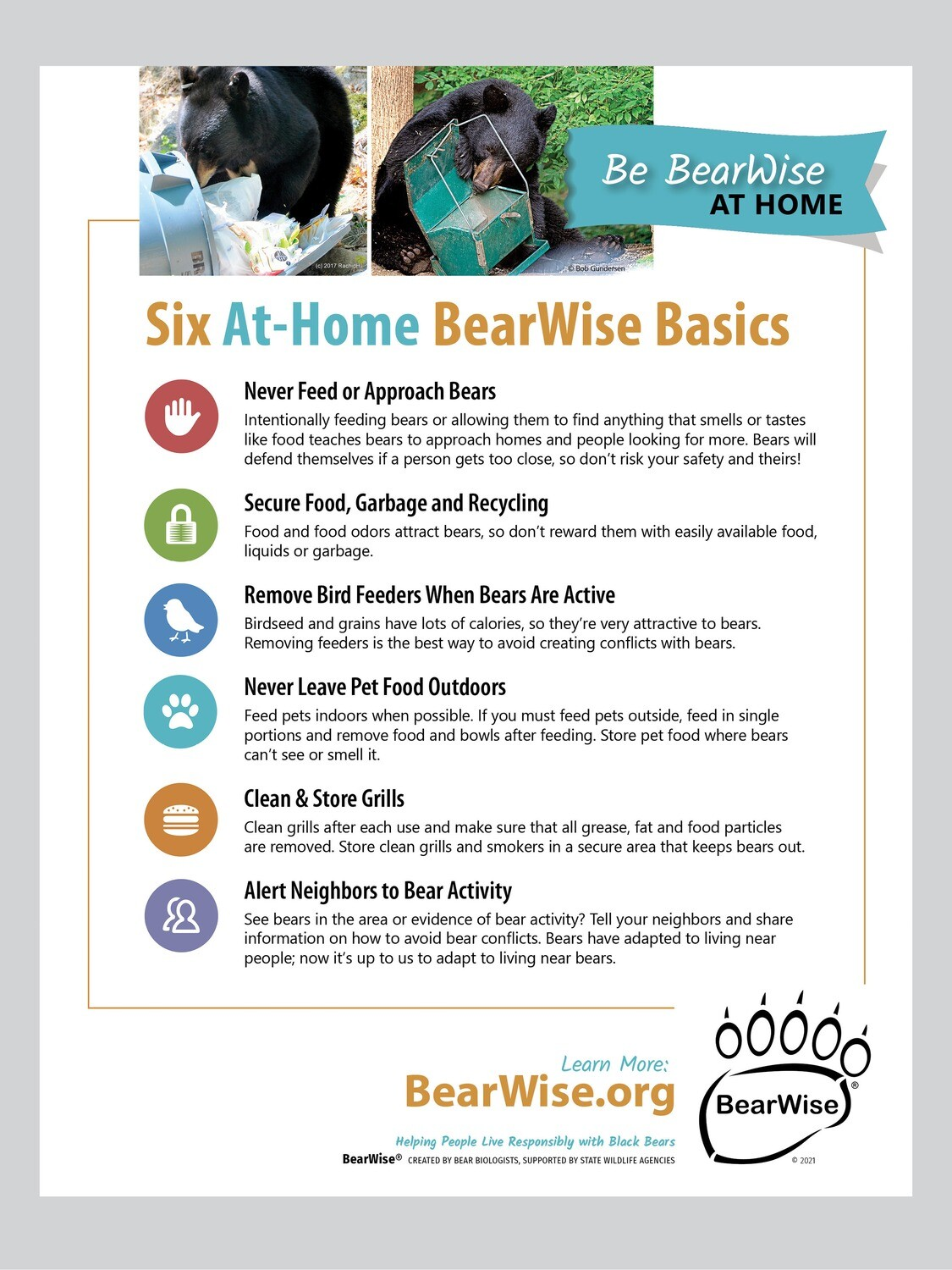 At-Home BearWise Basics Flyer