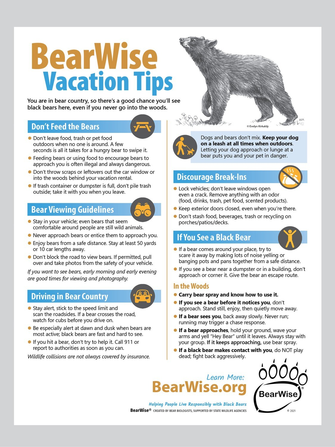 BearWise Vacation Tips Flyer