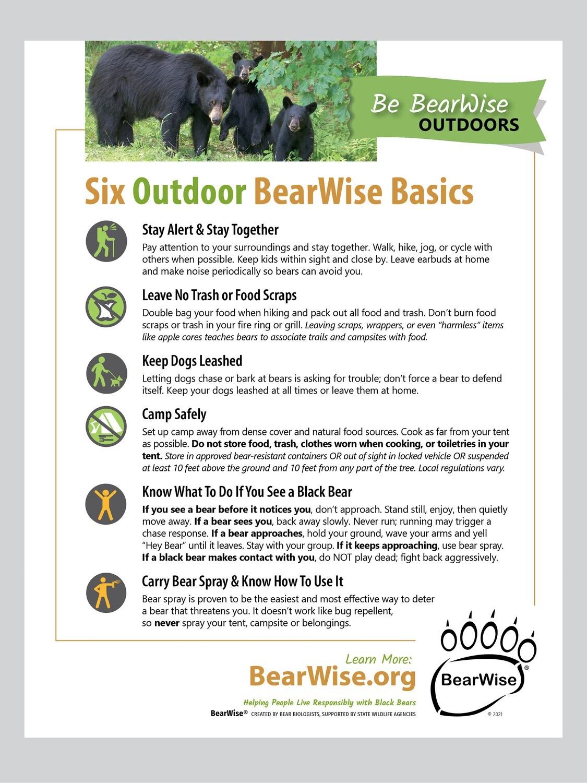 Outdoor BearWise Basics Flyer