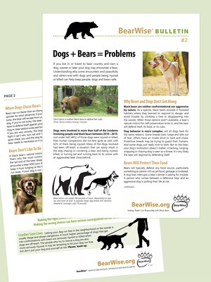 BearWise Bulletin #2: Dogs + Bears = Problems