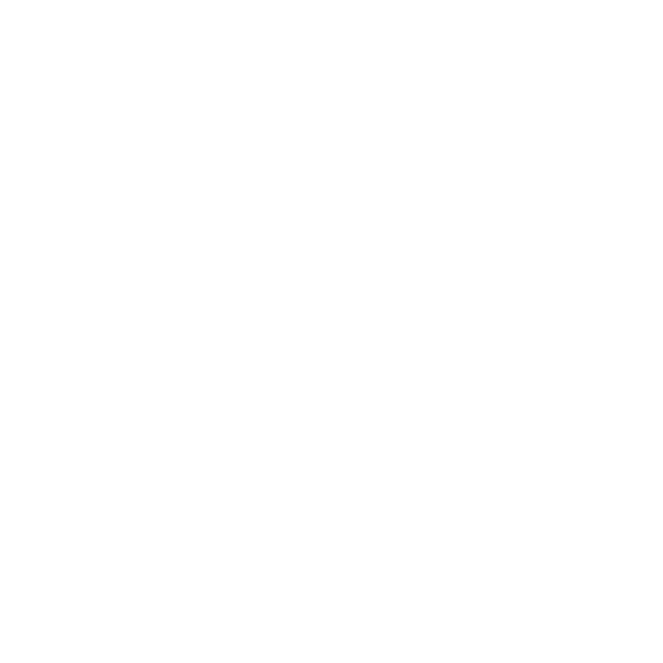 PERSONAL BRANDING FOR PHOTOGRAPHERS / MAURICE JAGER