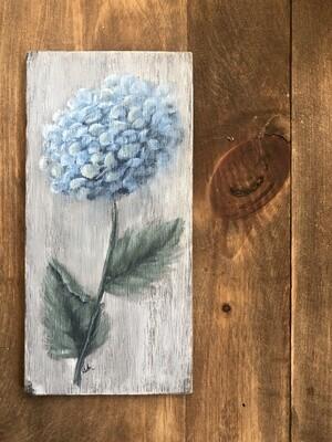 Painted Plank Hydrangea no. pp4