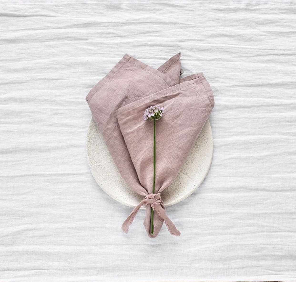 European Linen Napkins set/2