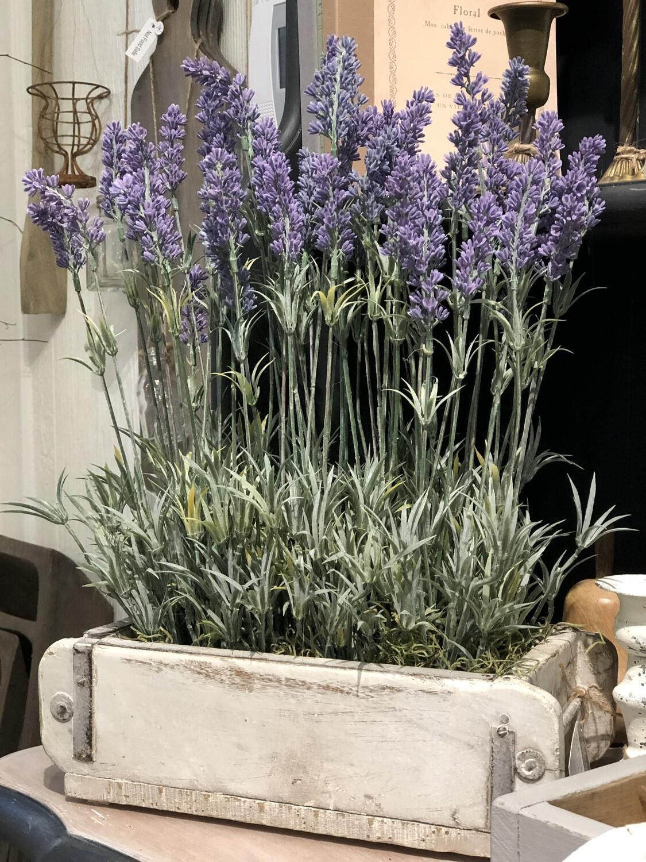 Lavender floral no. 220