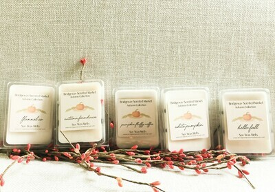 Bundle of 5 Autumn Soy Wax Melts - Shipping Included