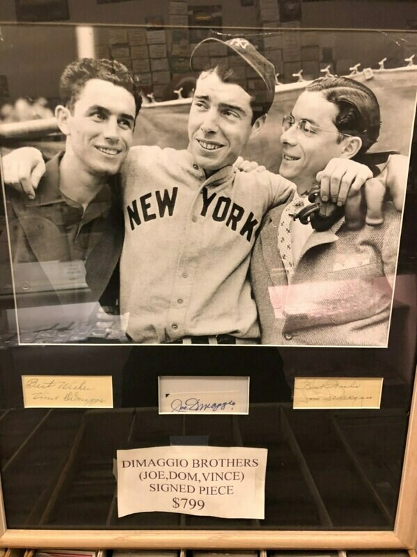 DiMaggio Brothers signed Piece, matted and framed: Joe, Dom,Vince PSA/DNA