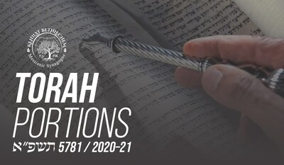 Torah Portion 5781 - Free Download
