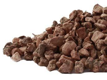 Alum Root - loose tea