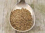 Celery Seed - Loose Tea