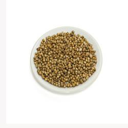 Coriander Seeds - 50 Capsules
