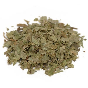 Bilberry Leaf - loose tea