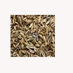 Fennel Seeds - 50 Capsules