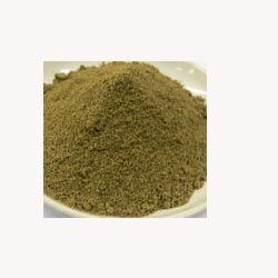 Kelp Powder - 50 Capsules