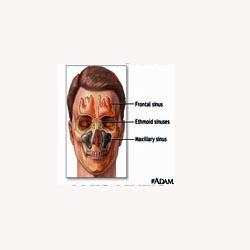 Sinus Mix - 50 Capsules