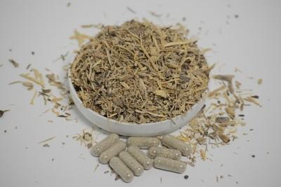 Angelica Root - 50 capsules