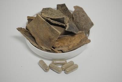 Bois Bande - 50 capsules