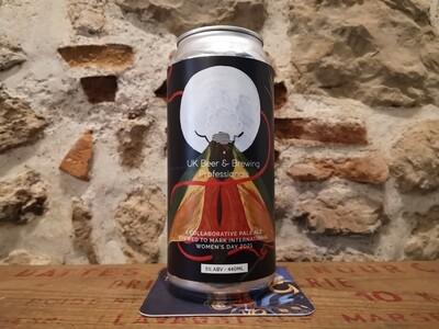 Astonish a Mean World, Pale Ale, 5%