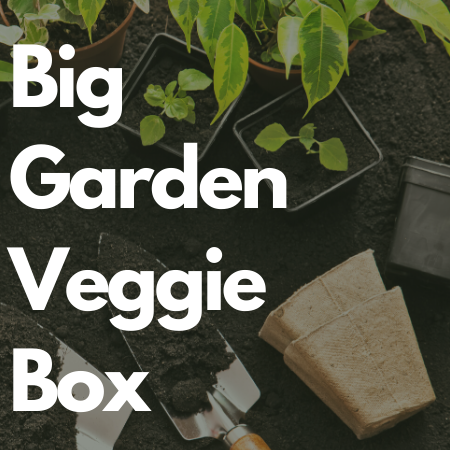 PREORDER 2021 Big Garden Veggie Box - Grow Your Own Garden