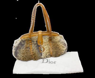 Christian Dior Limited Edition Runway D Bag
