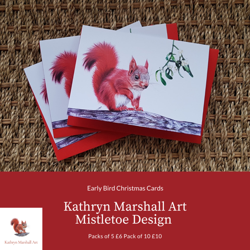 Red Squirrel and Mistletoe Christmas Cards