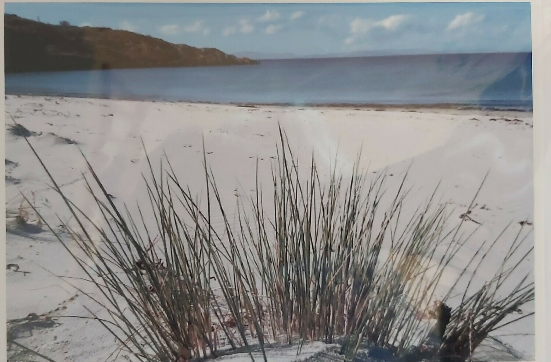Ellean Garbh, Isle of Gigha