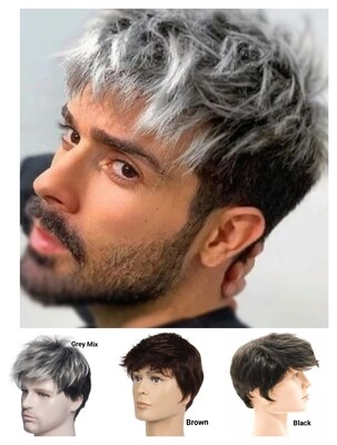 Men's Short Style Wig