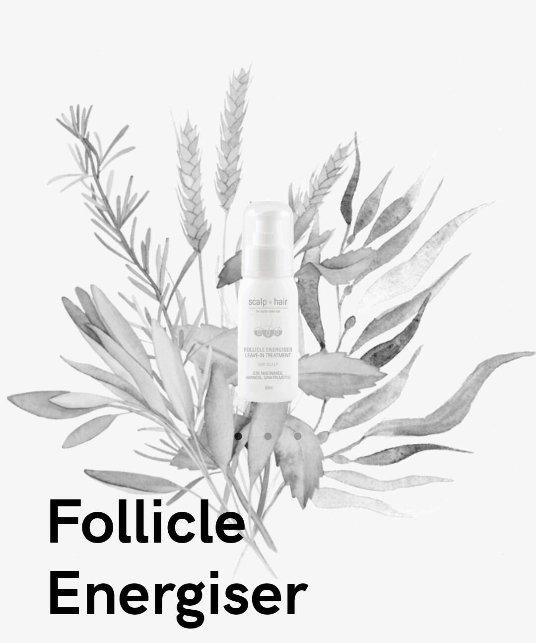 Nak Scalp to Hair Follicle Energiser Leave In Treatment 100mL