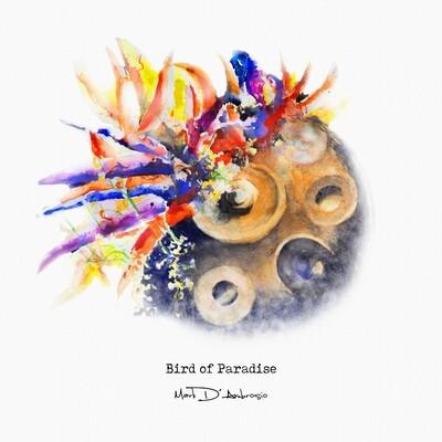 Bird of Paradise Physical CD