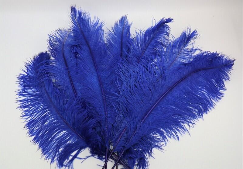 Straussenfeder blau