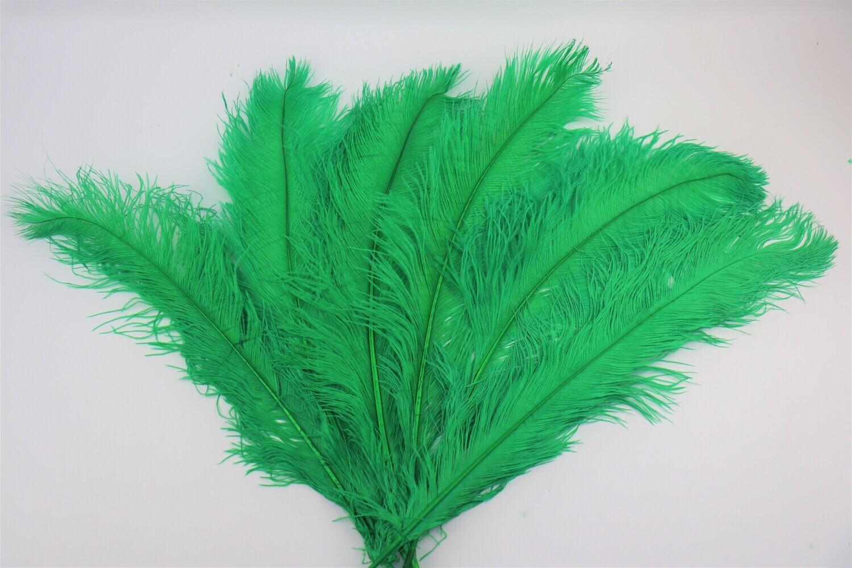 Straussenfeder grün