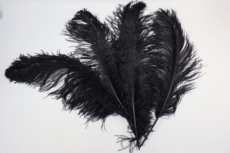 Straussenfeder schwarz