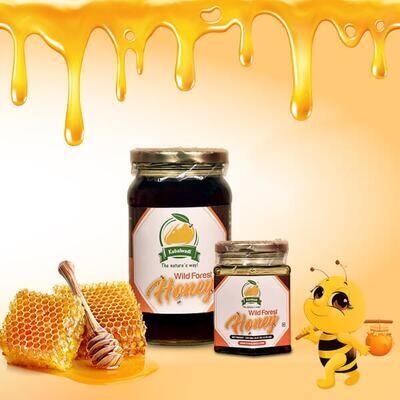 Kubalwadi Raw Wild Forest Honey - 500 gm