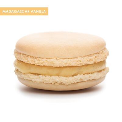 Premium XL Macarons Madagascar Vanilla