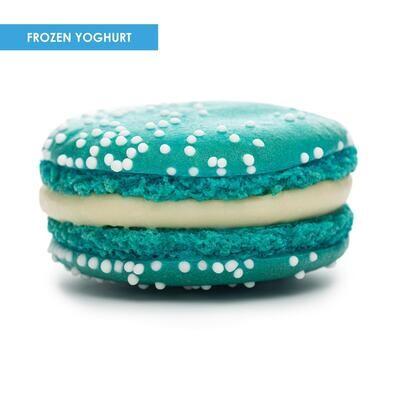 Premium XL Macarons Frozen Yoghurt