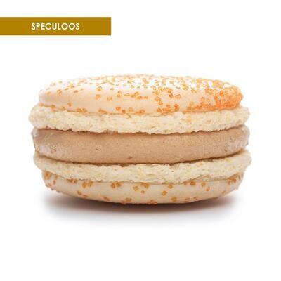 Premium XL Macarons Spekulatius