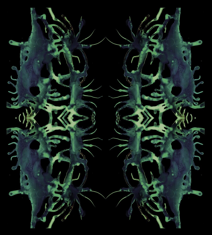 LSD VISIONS