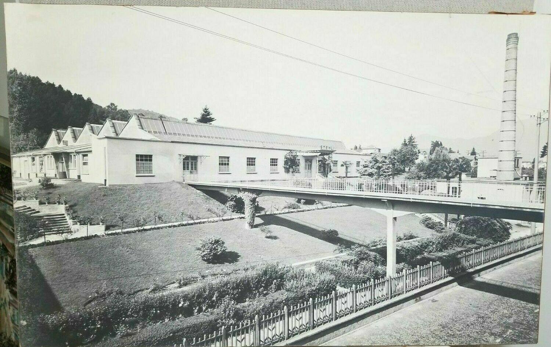 "Vintage Stehli Silk Company Tropical Factory Photograph Print 38"" x 24"""