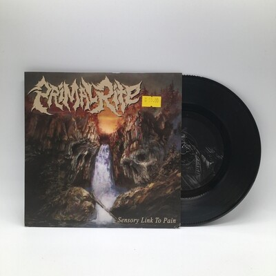 PRIMAL RITE -SENSORY LINK TO PAIN- 7 INCH