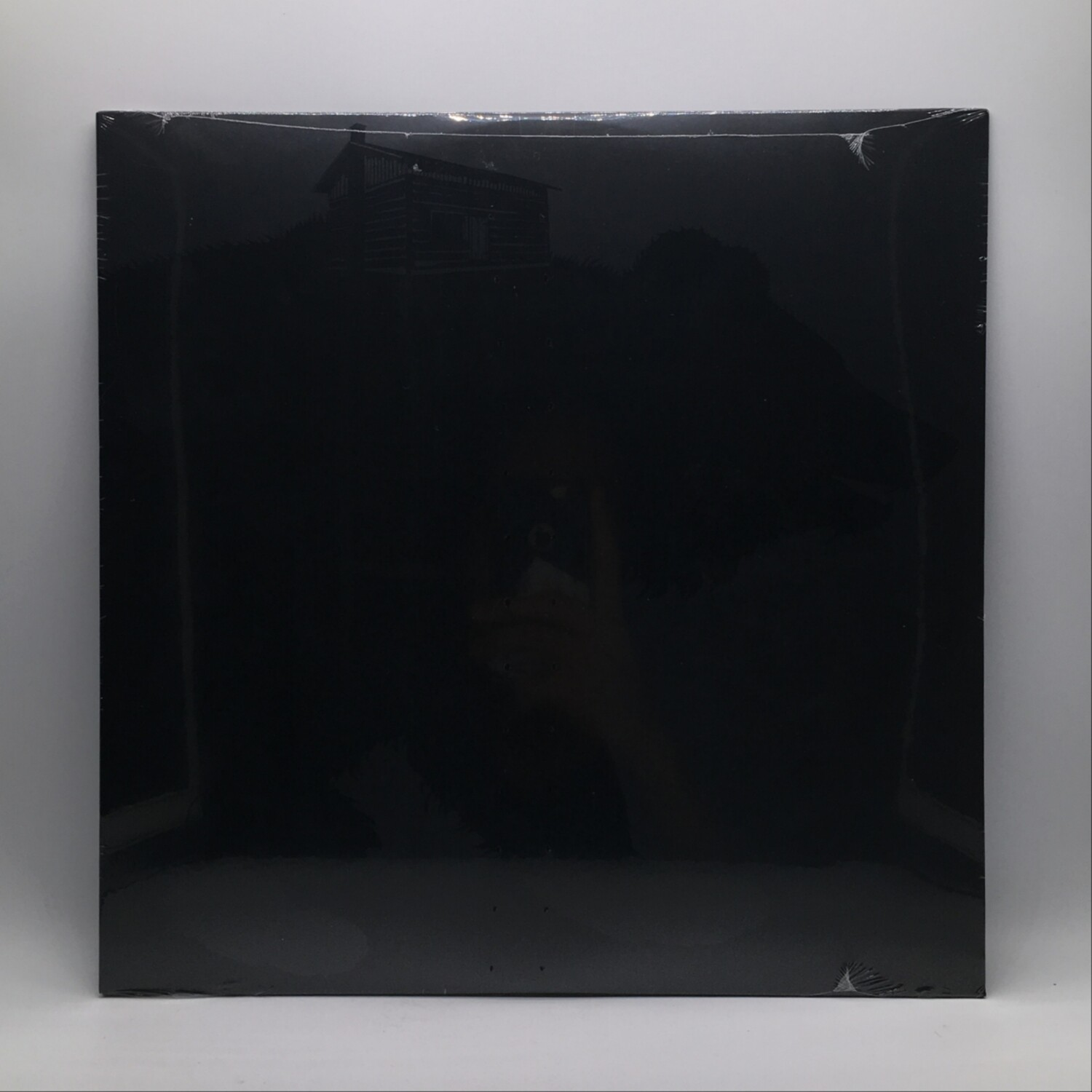 THIS WILL DESTROY YOU -YOUNG MOUNTAIN- LP